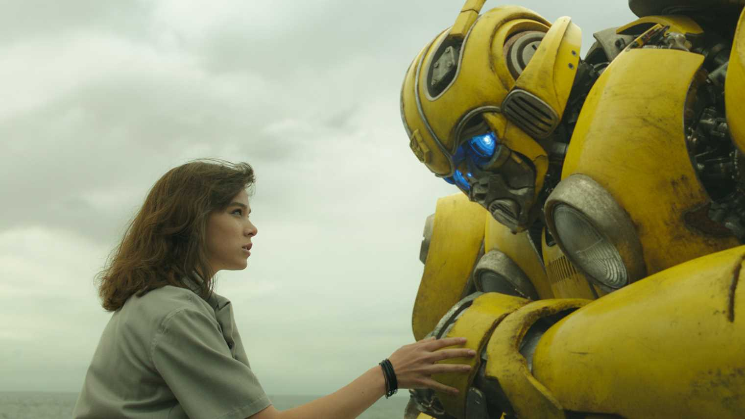 Bumblebee article