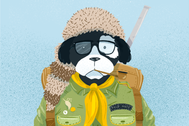 Wes Anderson dog (Sam from Moonrise Kingdom)