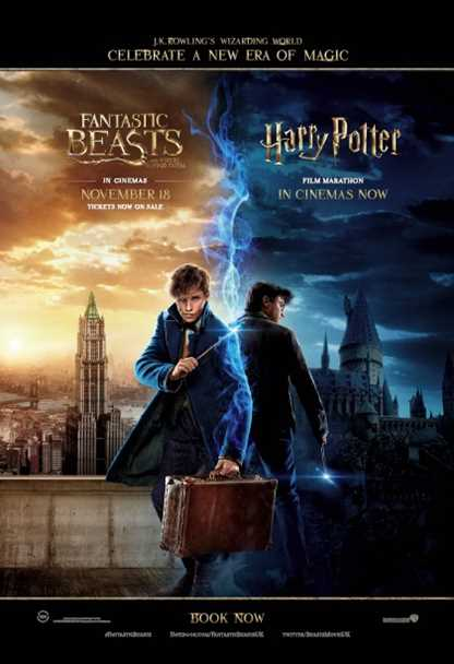 Harry Potter Double Bill: Parts 7 & 8
