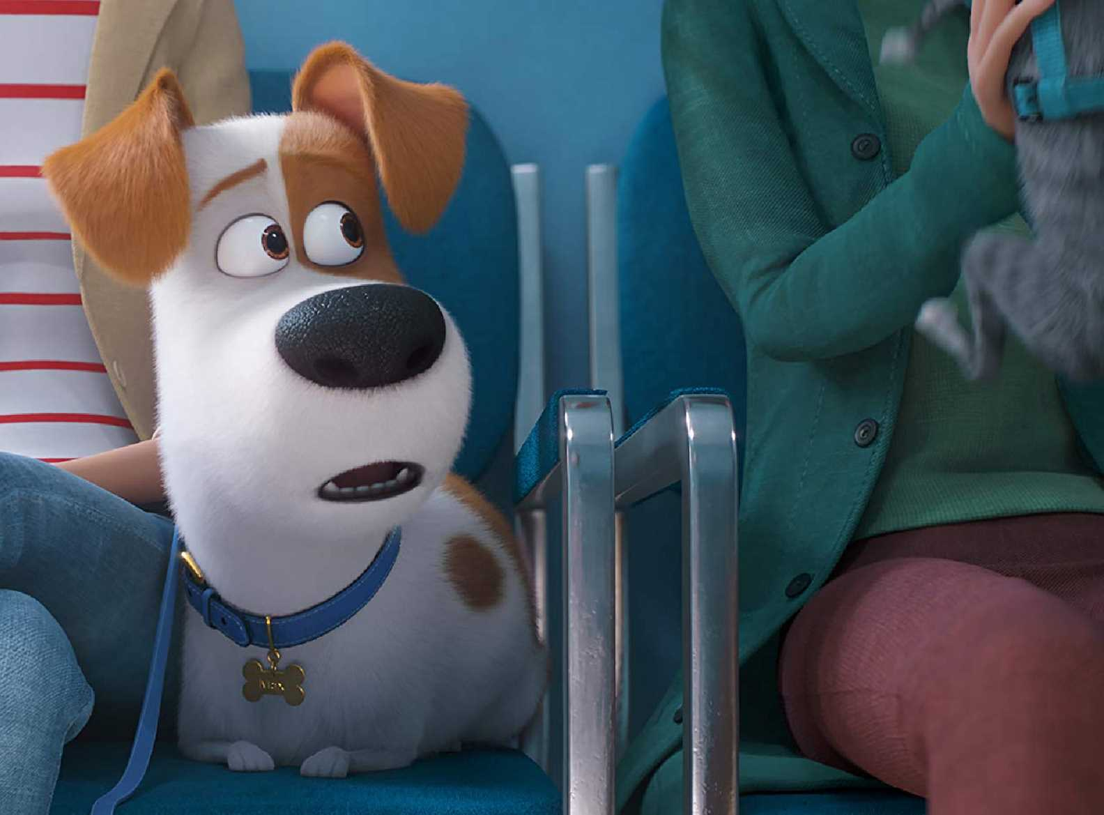 Watch The Secret Life Of Pets 2 At Vue Cinema Book Tickets Online