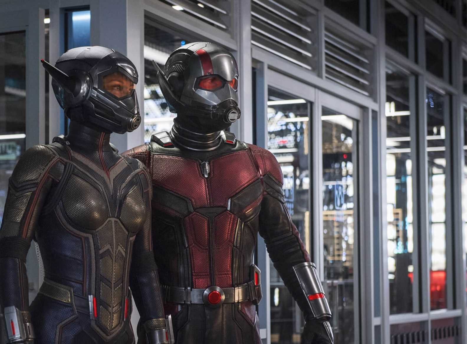 Image result for antman and wasp
