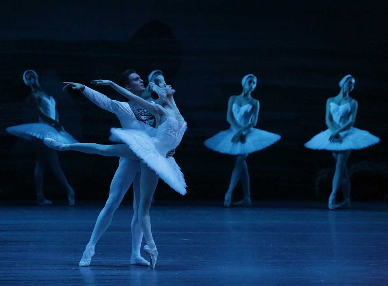 Afbeeldingsresultaat voor Vue Ballet: Swan Lake